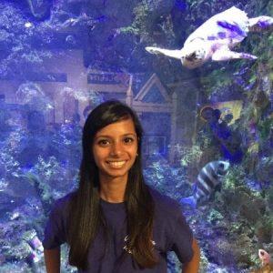 Avatar for Shweta Karikehalli