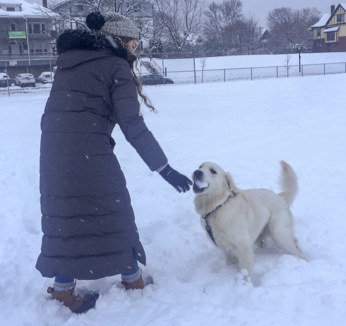 DOg Snow FUn
