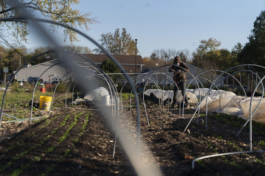 Alice Gallagher puts up hoops to protect winter crops. In the winter months, the farm harvests and retains crops that will be harvested in the spring.