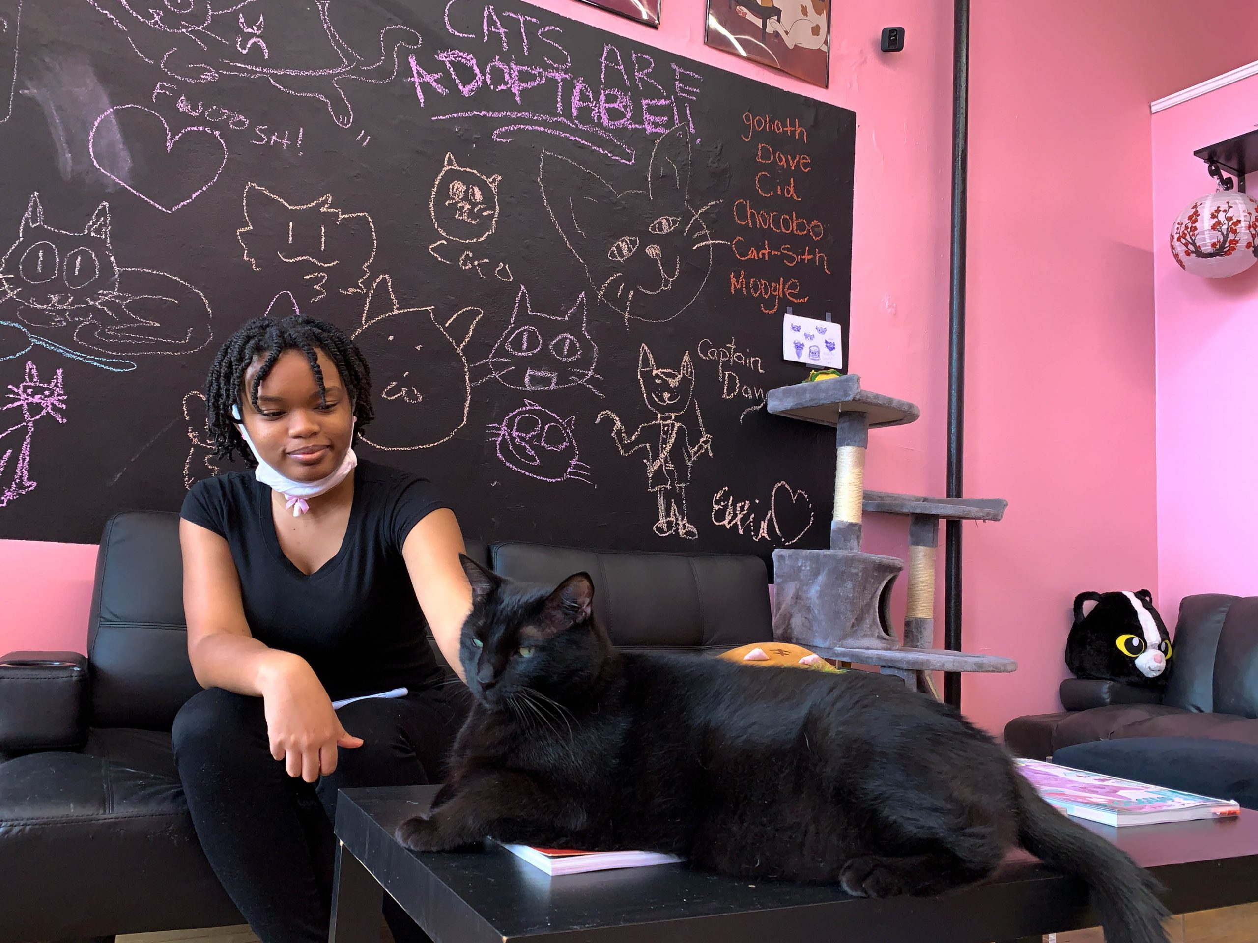 Kamanii Hicks, a server at the Luna Cafe, enjoys a break in the cat room while preparing to open the cafe.