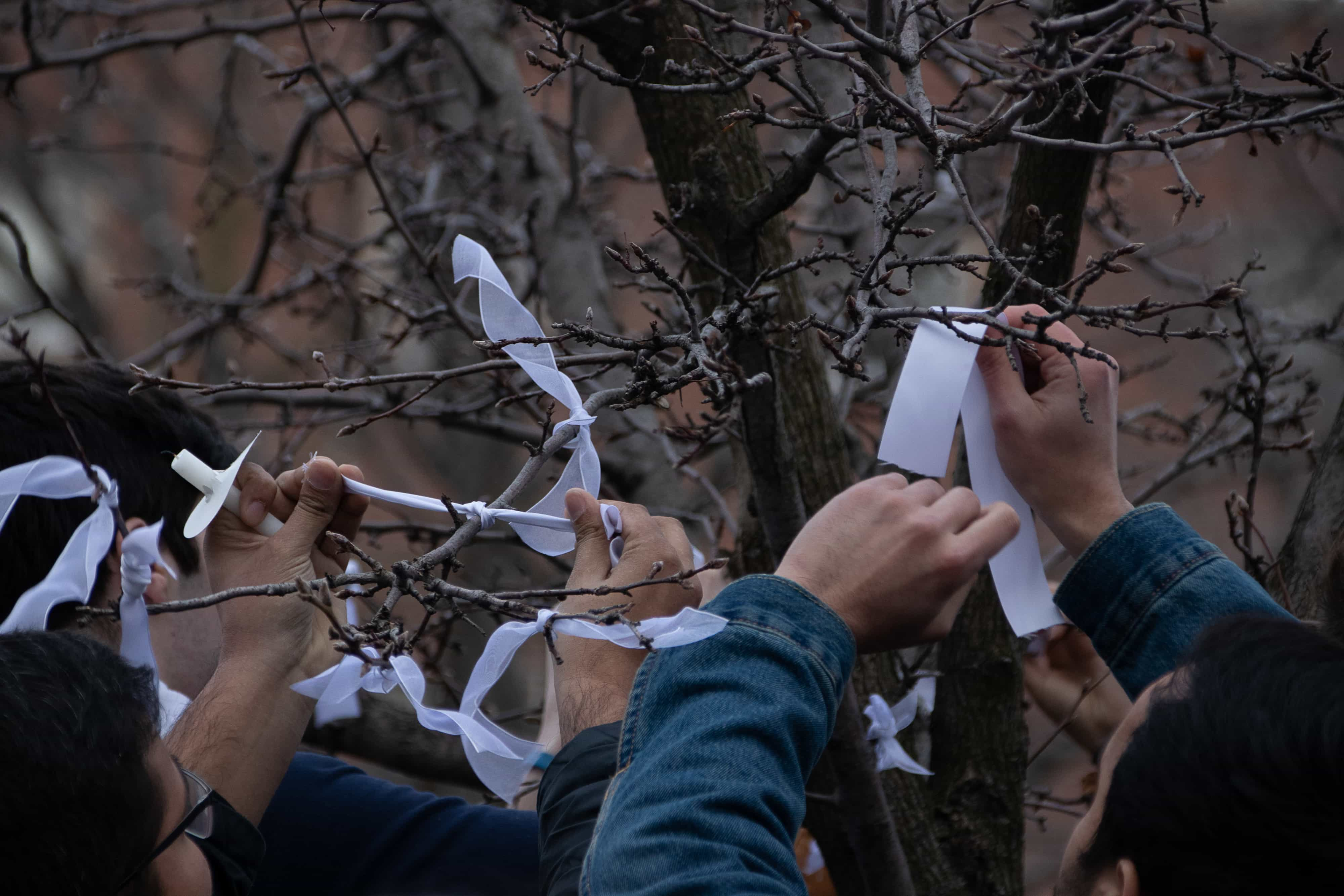 Community members tie white ribbons around the trees in front of Hendricks Chapel on Tuesday, March 19, 2019, in memory of those who where lost in the mass shootings in Christchurch, New Zealand.