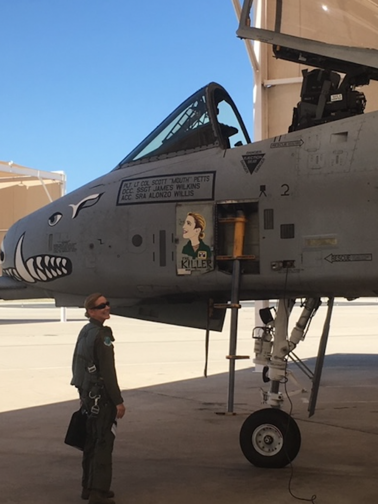 A-10 painting