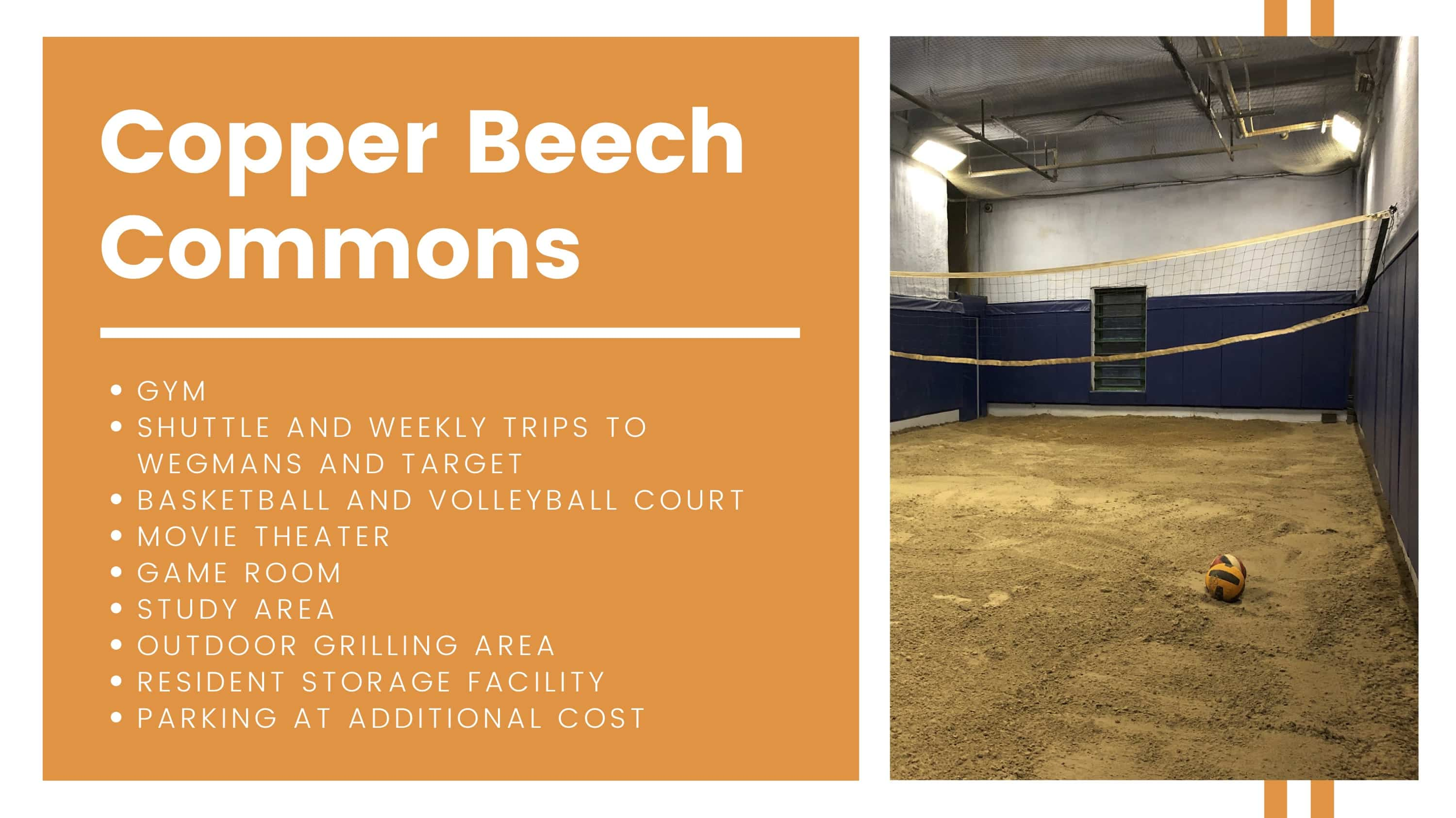 Copper Beech Commons amenities breakdown