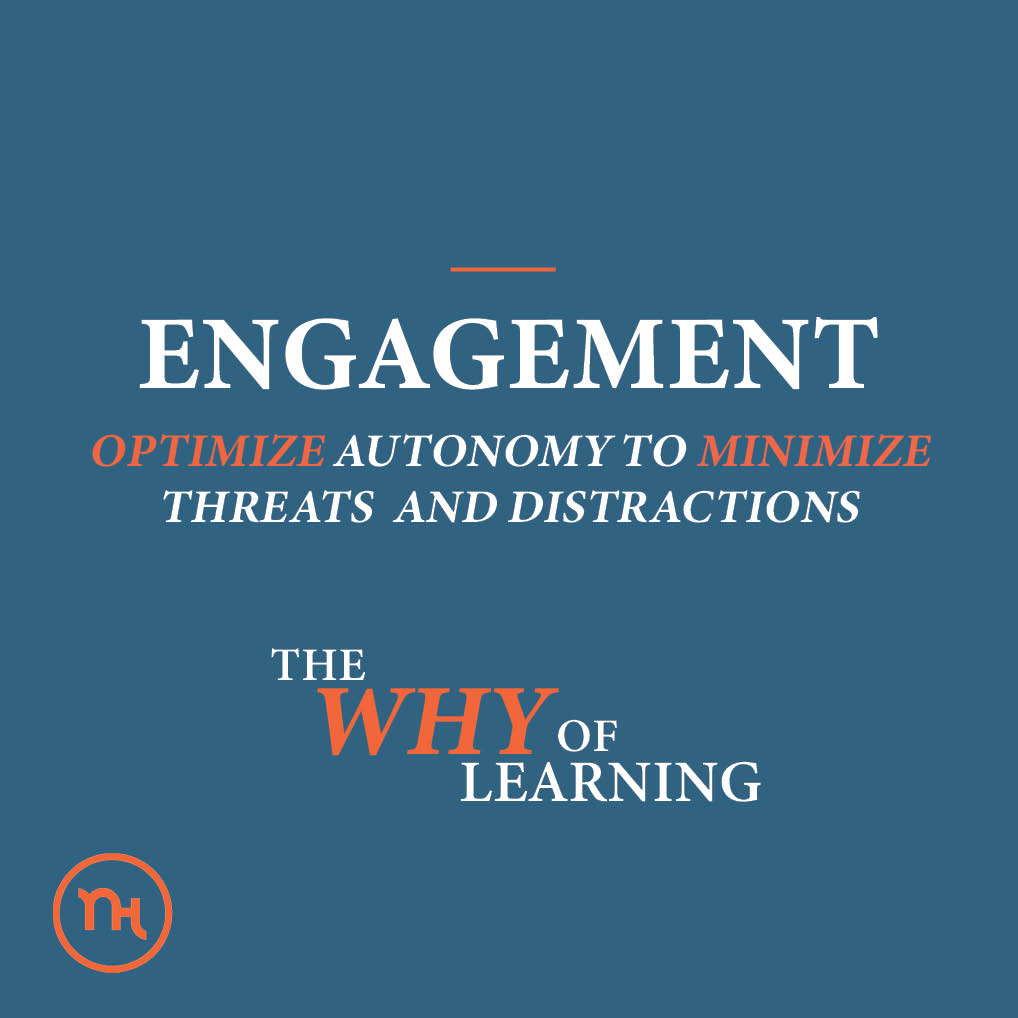 Representation; OPTIMIZE AUTONOMY TO MINIMIZE THREATS AND DISTRACTIONS; The why of learning