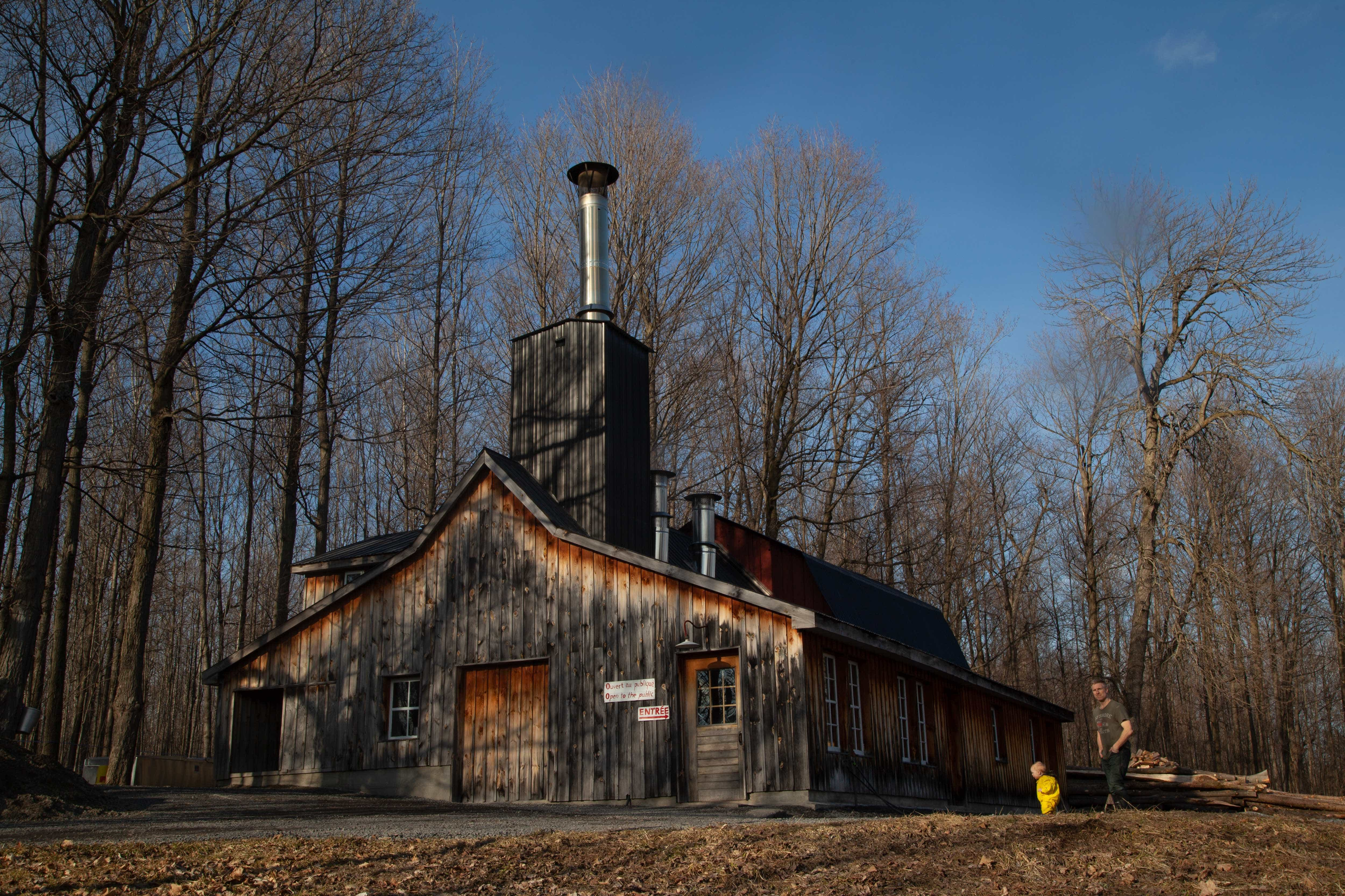 In the Canadian sugaring industry, maple syrup producing is often a family affair. Three generations of the St. Pierre family can be found working around their maple camp.