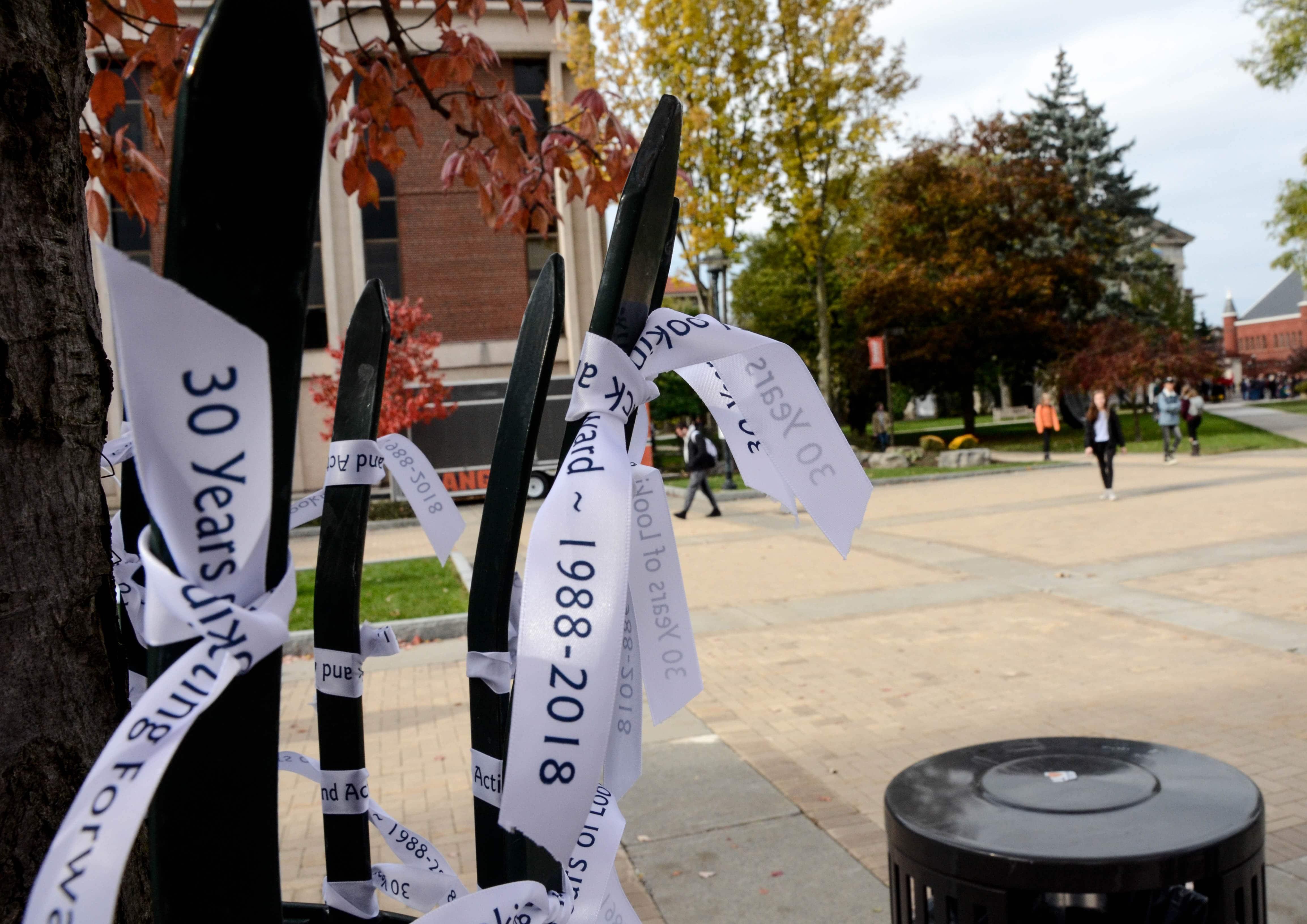 Remembrance Week ribbon tying