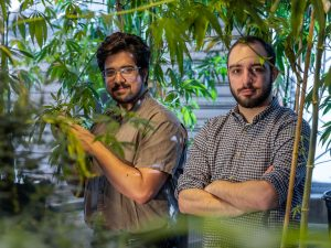 Jacob Toth and George Stack are both PhD Students in Plant Breeding and Genetics at Cornell.