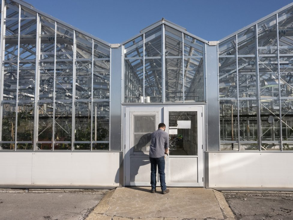 George Stack enters the greenhouse at Surge Laboratory in Geneva.