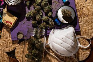 Marijuana usage during COVID-19.