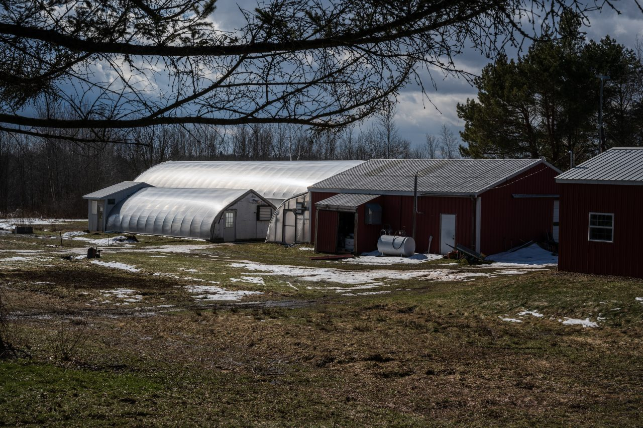The expanding greenhouse on Veteran's Ananda's 22-acre farm in Fulton, New York