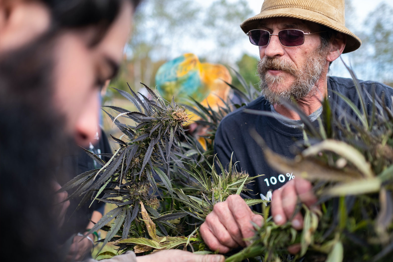Hemp farmer at harvest festival